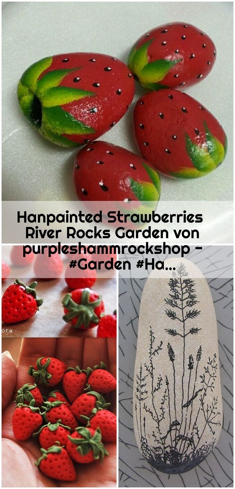 Hanpainted Strawberries River Rocks Garden von purpleshammrockshop - #Garden #Ha...,  #garden... #riverrockgardens Hanpainted Strawberries River Rocks Garden von purpleshammrockshop - #Garden #Ha... , Hanpainted Strawberries River Rocks Garden von purpleshammrockshop - #Garden #Hanpainted #purpleshammrockshop #River #Rocks... ,  #garden #Hanpainted #purpleshammrockshop #River #rocks #Strawberries #von #riverrockgardens