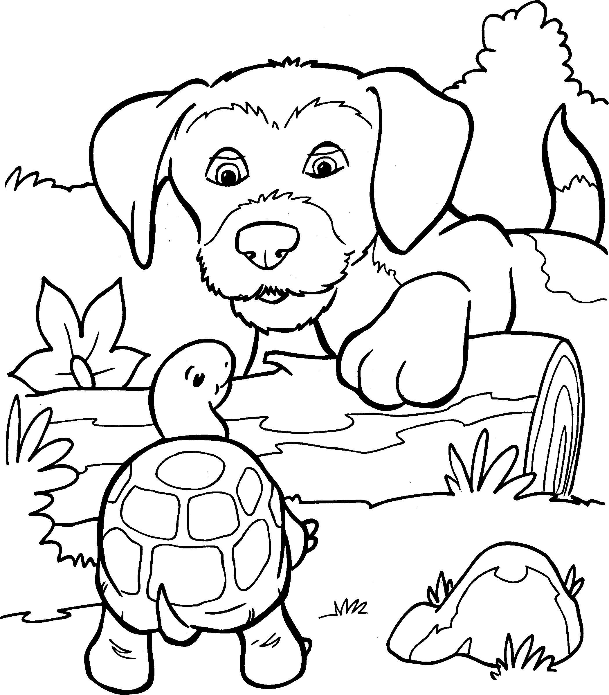 honden kleurplaten coloring pages dieren kleurplaten