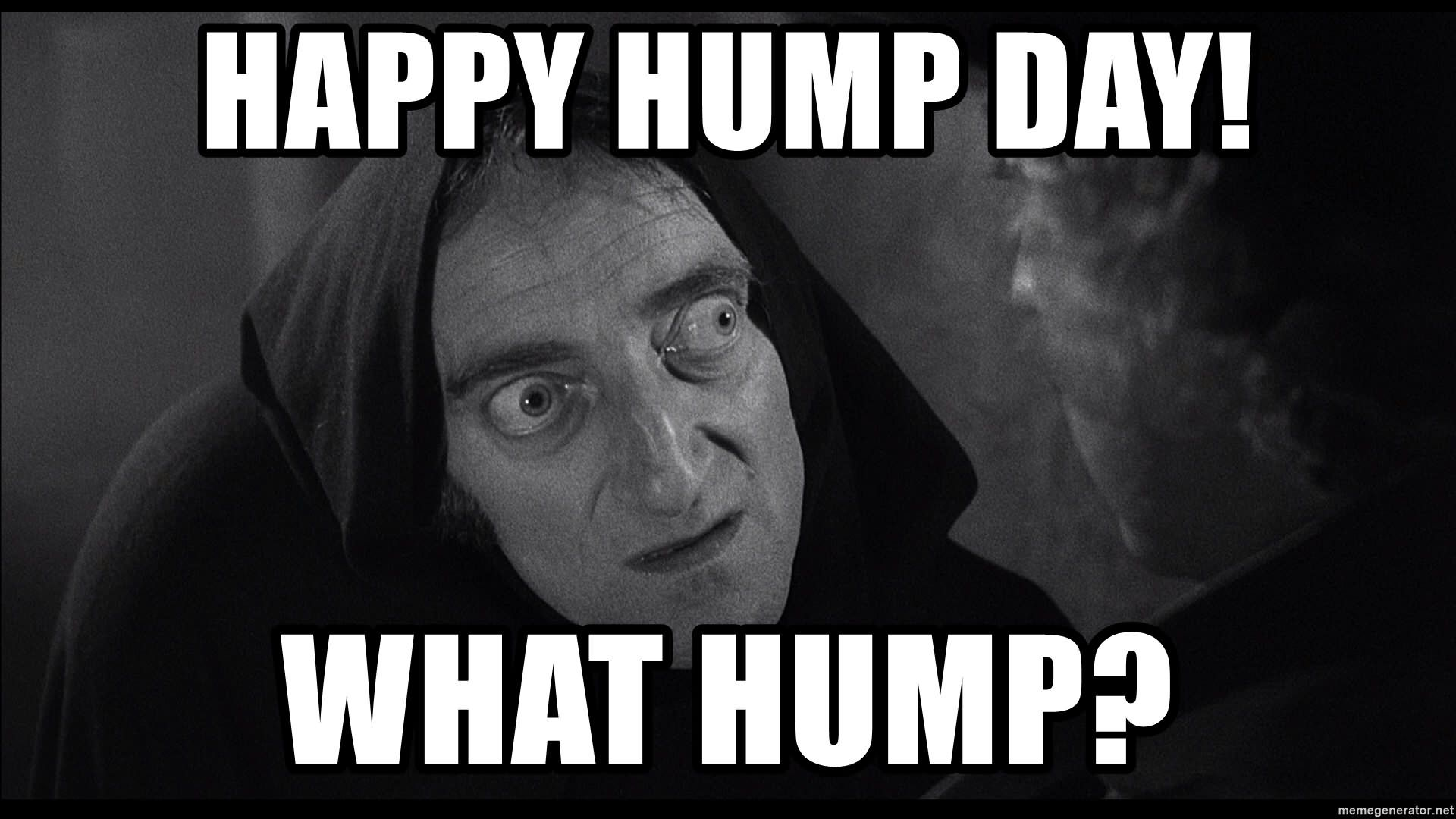 28 Funniest Happy Hump Day Memes That Makes You Fun Happy Hump Day Meme Hump Day Humor Funny Happy
