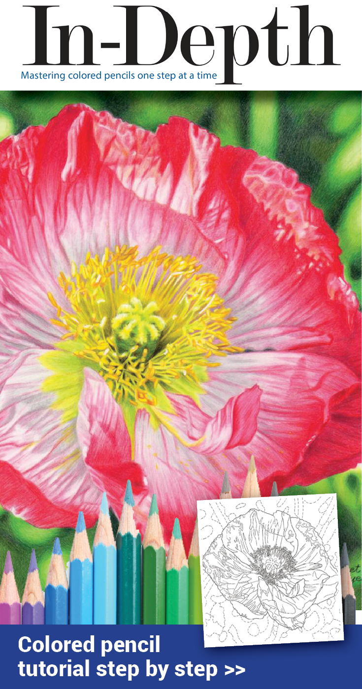 Dahlia poppy in depth tutorial pinterest drawing flowers drawing flowers in colored pencil on drafting film is almost like magic learn how to use this unique surface with 2 floral cp demos izmirmasajfo