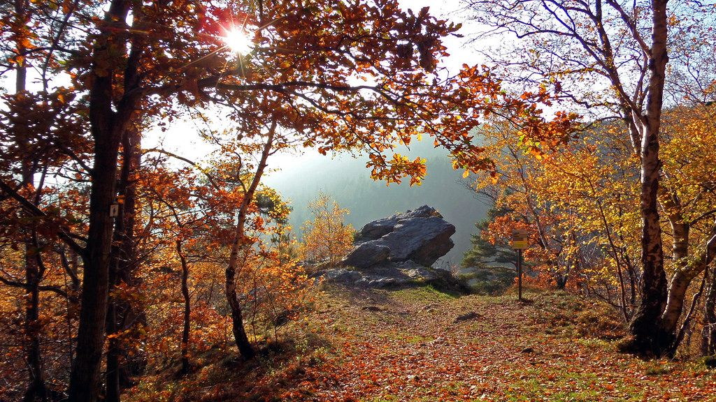 Autumn @ Rocher de Falize | by Lцdо\/іс