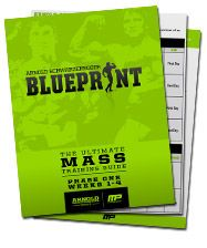 Arnold schwarzeneggers blueprint to mass bodybuilder physique this is arnold schwarzeneggers blueprint its your map to an iron mind epic physique and incredible legacy follow in the footsteps of the worlds malvernweather Images