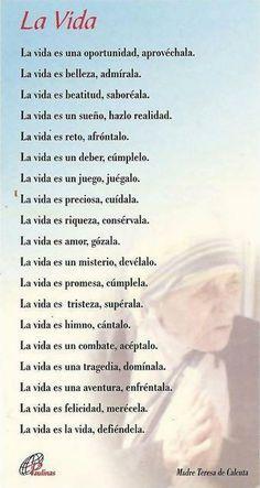 Frases Madre Teresa De Calcuta Buscar Con Google Creación Divina