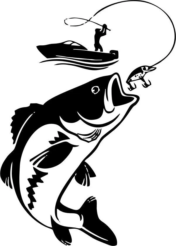 Ocean Fishing By Tourist Boat Graphic Design Vector Fishing Svg Image Of Fish Fish Drawings