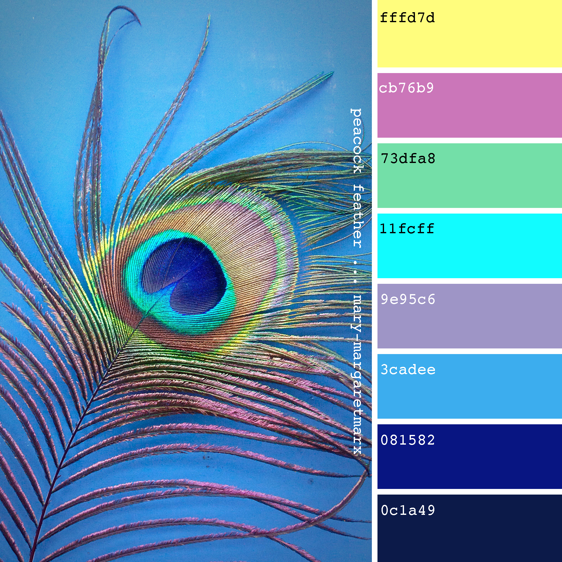 Pin by R S on Peacock Colors