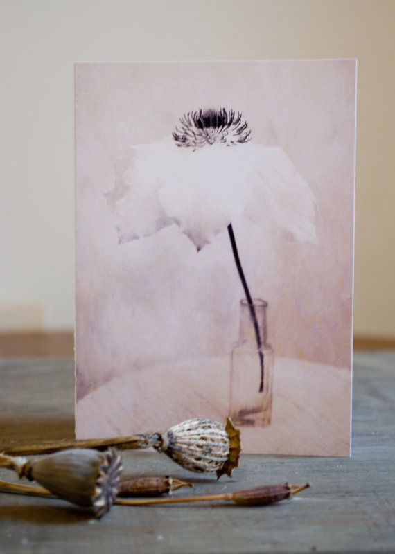Floral blank greetings /notecard   Large White Clematis by PaperSnapdragon, £2.00