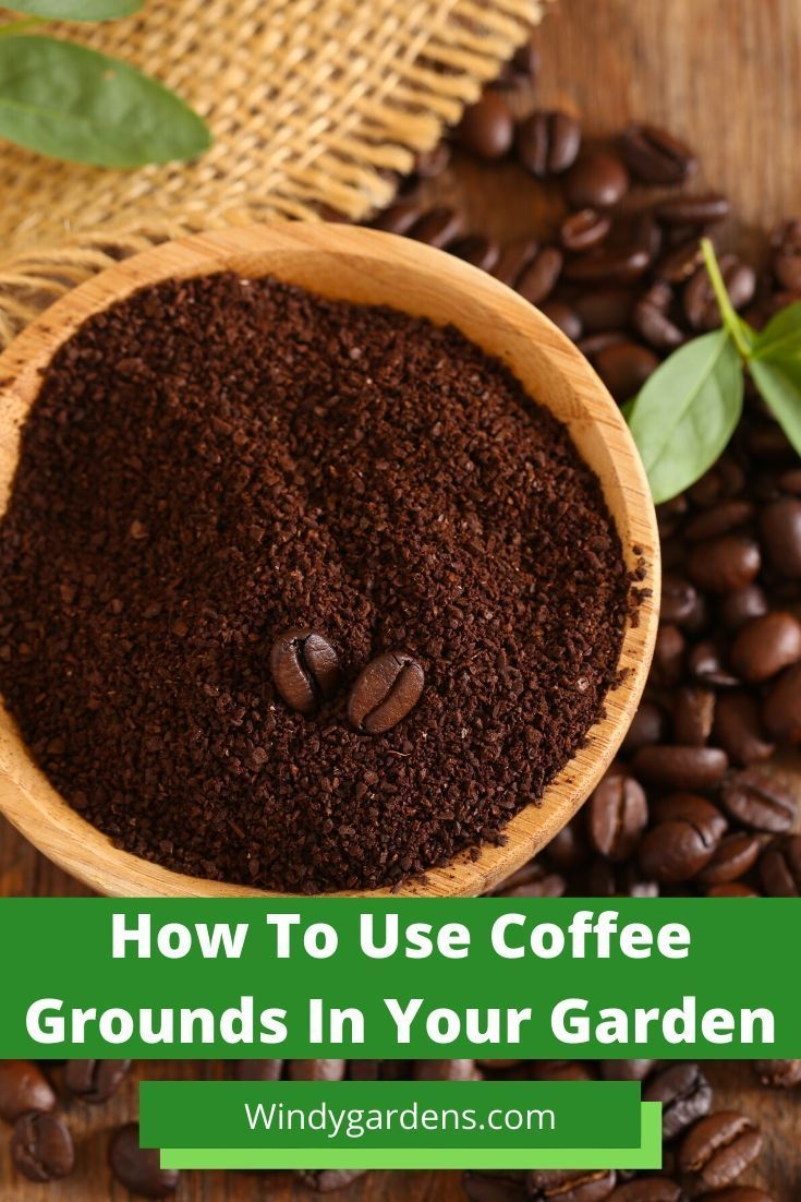 44++ What is ground coffee good for in the garden ideas