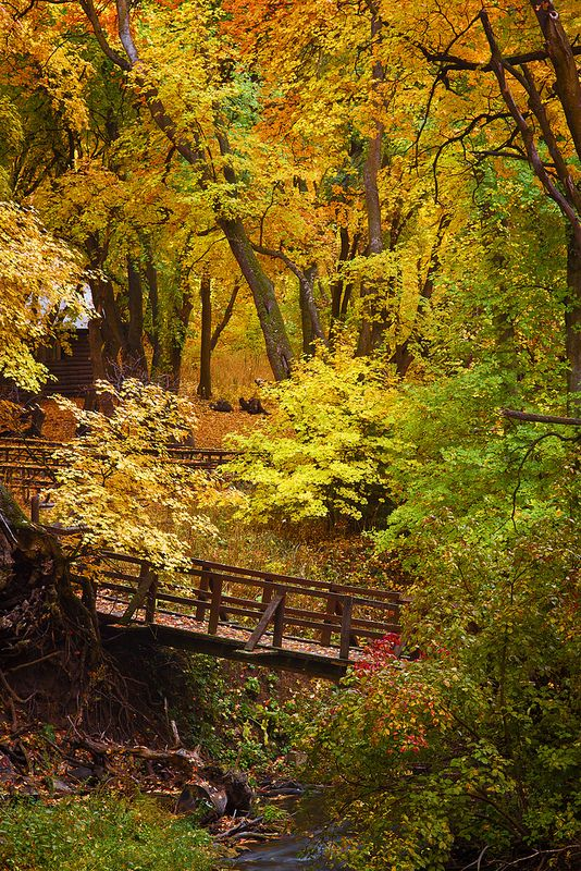 Autumn - Millcreek Canyon - 10-12-12 04   Flickr - Photo Sharing!