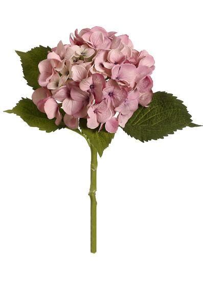 Silk flower hydrangea in antique pinkbr7 bloom x 19 tall silk flower hydrangea in antique pinkbr7 bloom mightylinksfo