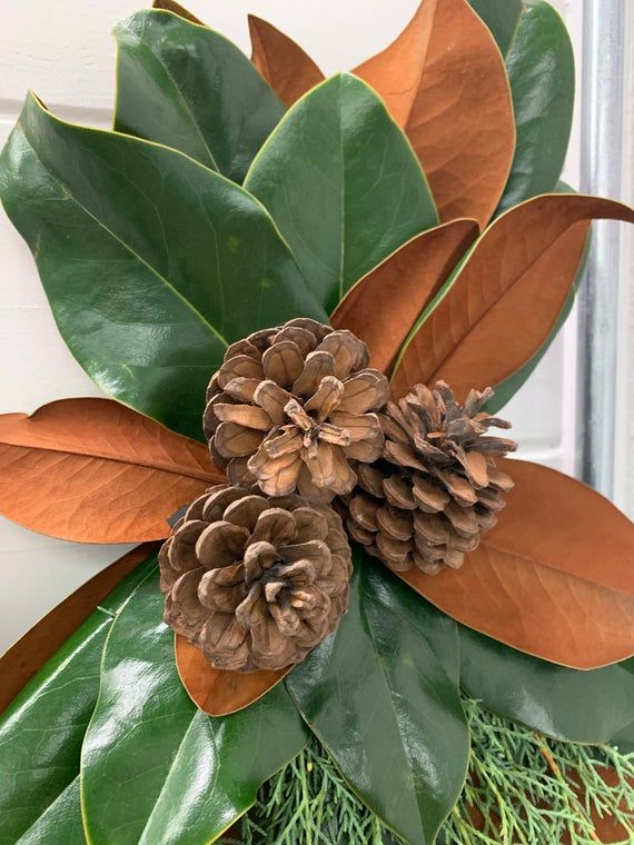 Magnolia Swag with Carolina Sapphire and Cones, Christmas Decor, Fall Decor, Magnolia Wreath, Freshly Harvested Foliage