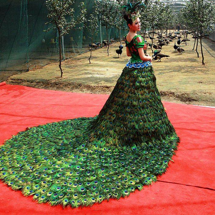 3 del vestido de boda del pavo real - $ 1,5 millones | aljibe