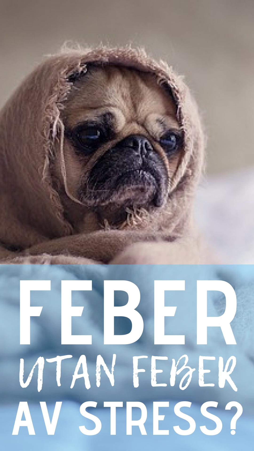 feber pga stress