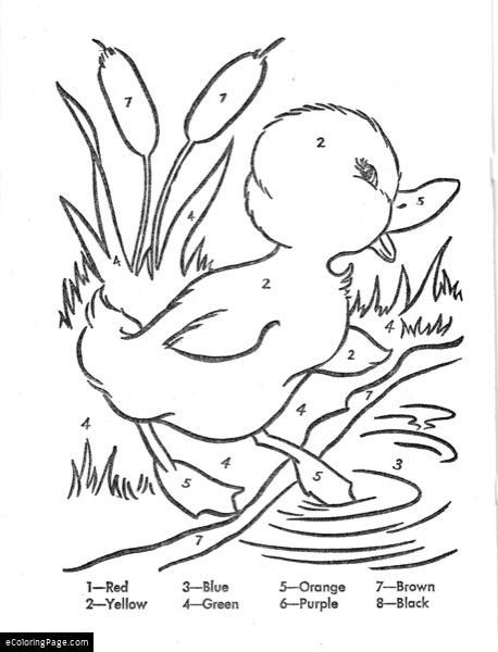 Risultati Immagini Per Color Duck Coloring Pages Easter Coloring Pages Color By Number Printable