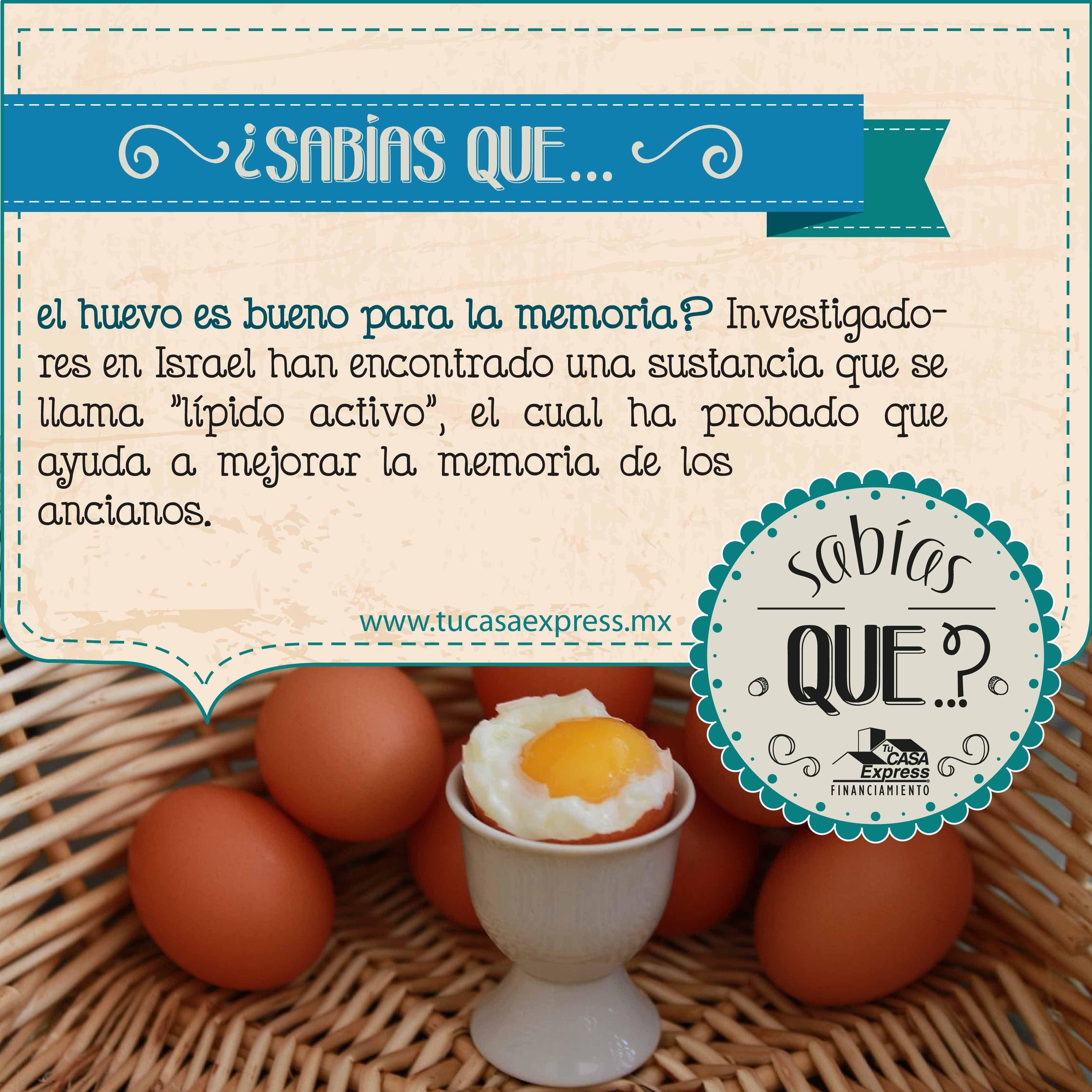 40 Ideas De Huevos En 2021 Huevo Huevos Nutrición