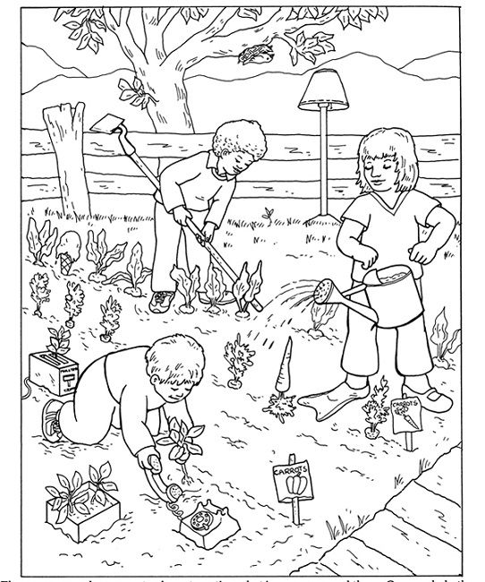 Coloring Page Of A Vegetable Garden Food Garden Coloring Pages