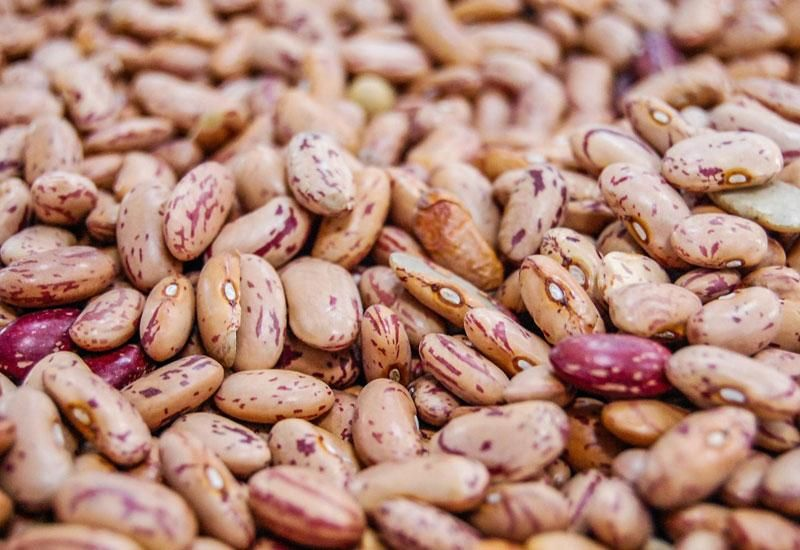 Are Beans Keto Can You Eat Beans On The Keto Diet Cancer Prevention Foods Cancer Fighting Foods Food