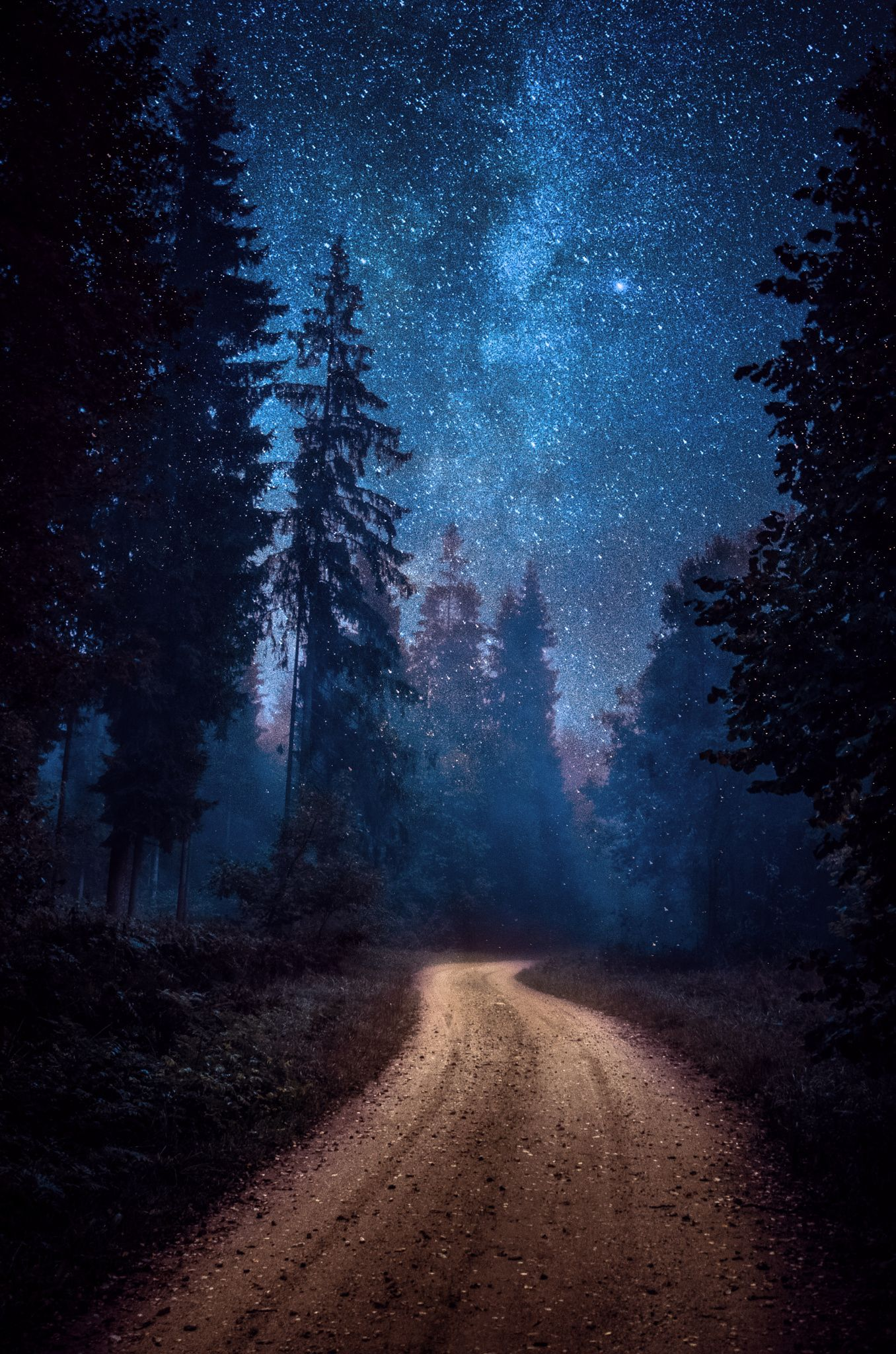 Winding Road Milky Way Astrophotography Forest Somewhere In