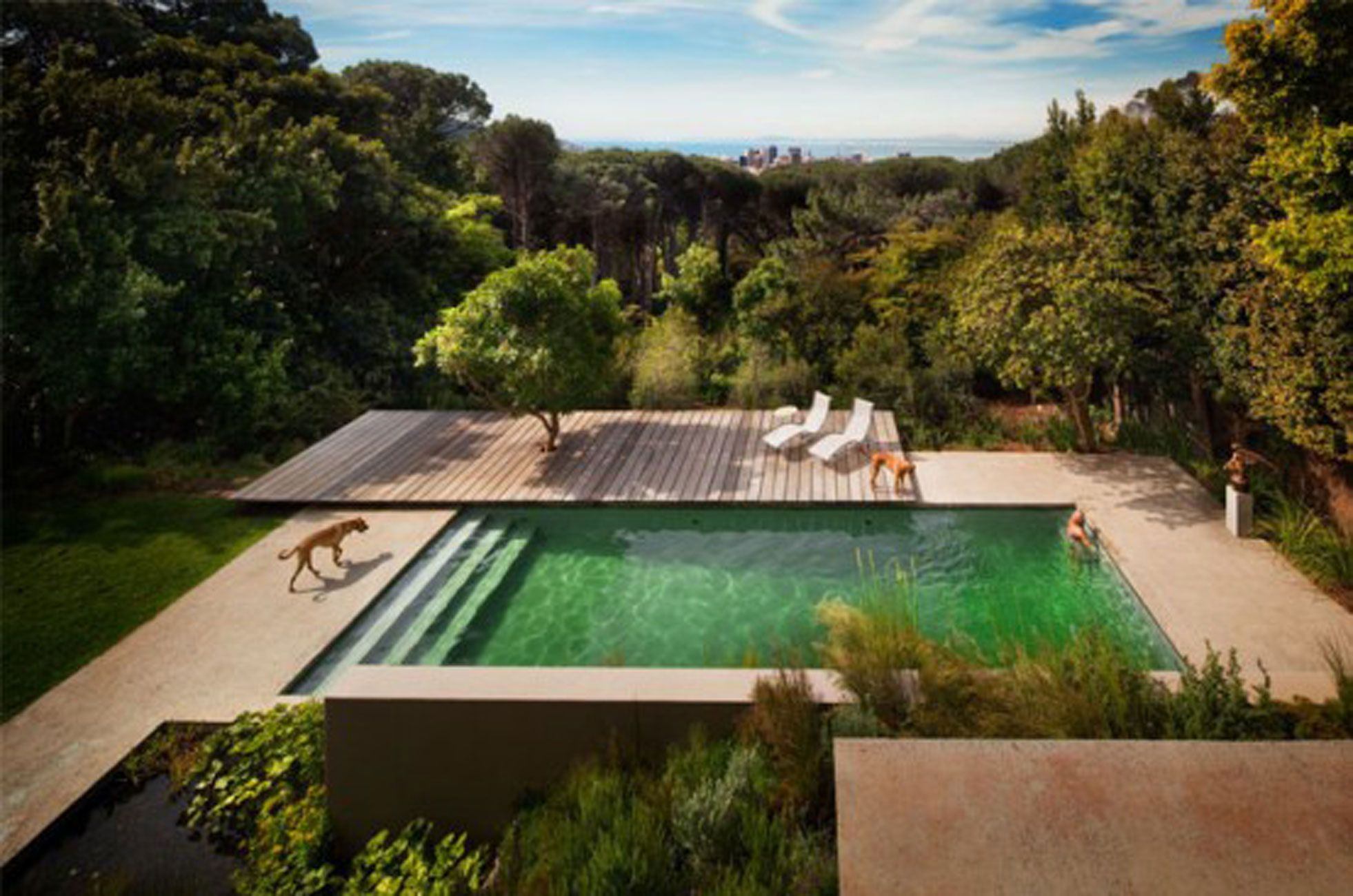 Popular Style > House Architecture In South Africa An Award Winner South African Institute Of Architects. 125 times like by user South Africa Buildings South African Institute of Architects Truck Stops South Africa, author Lucas Campbell.