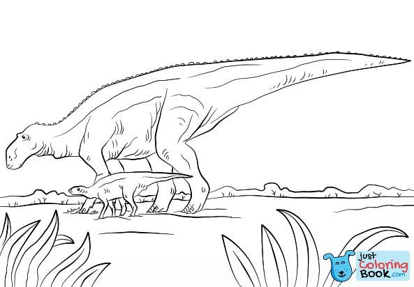 240 Dinosaur Coloring Page Ideas Dinosaur Coloring Pages Dinosaur Coloring Coloring Pages