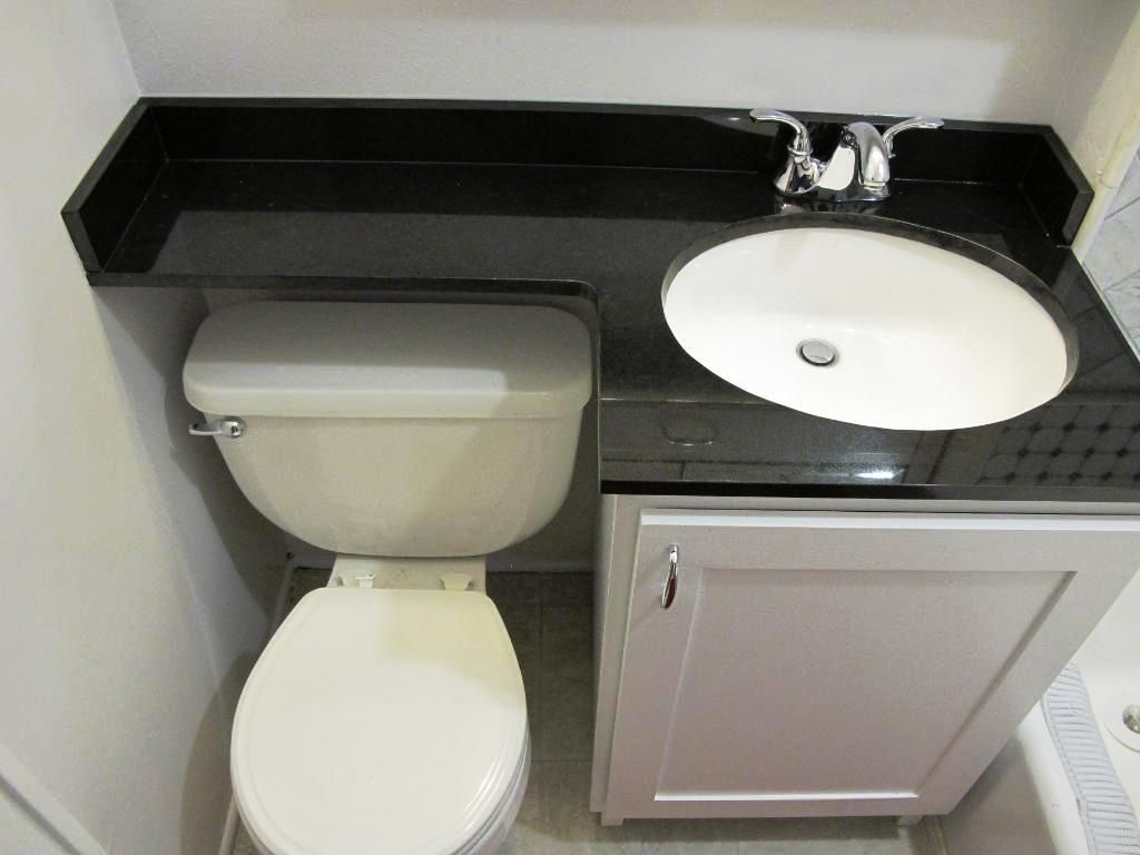 toilet and sink combination - Google Search | The New House ...