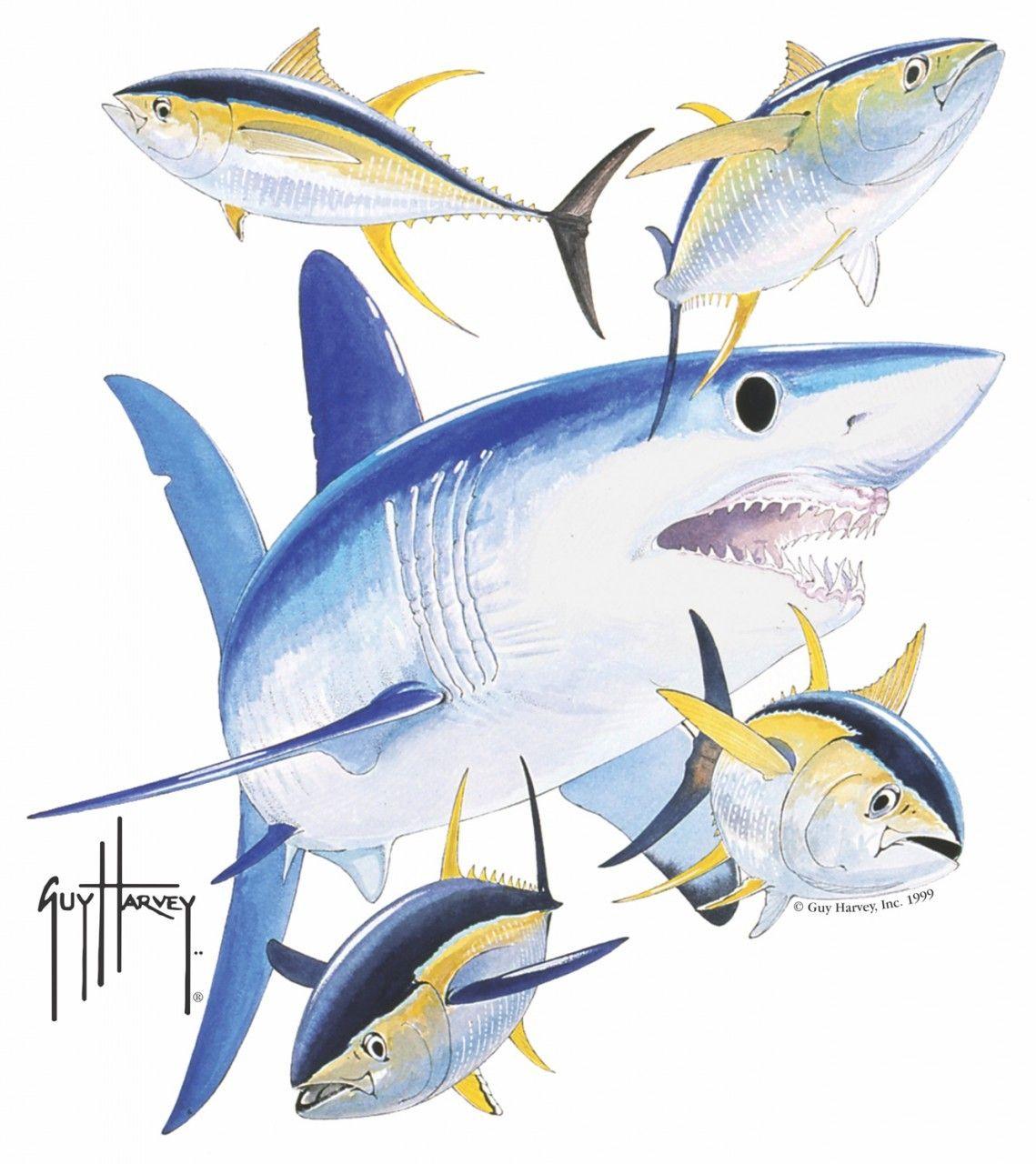Guy Harvey Shirts - Guy Harvey Mako Shark Window Decal 933de24279cf