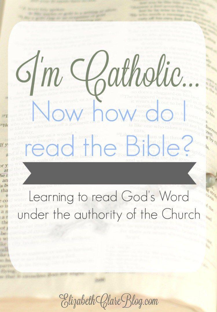 Now that I'm Catholic   how do I read the Bible | Catholic