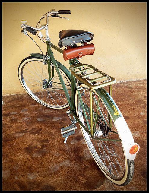 Roseann And Jonathan Hanson Raleigh Bikes Raleigh Bicycle