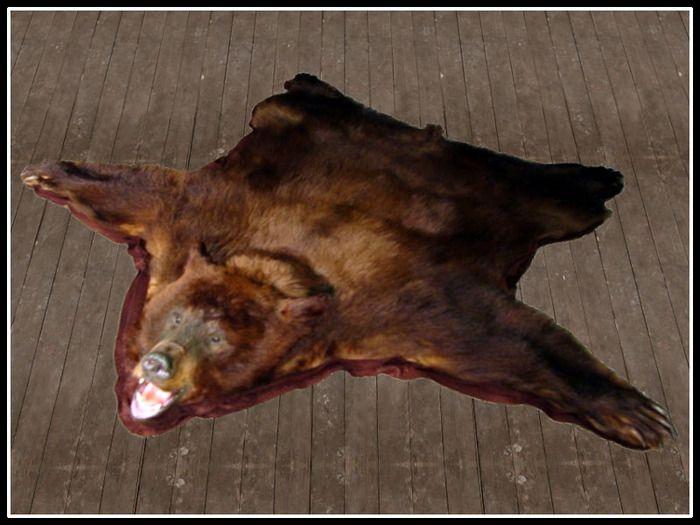Brown Bear Skin Rug