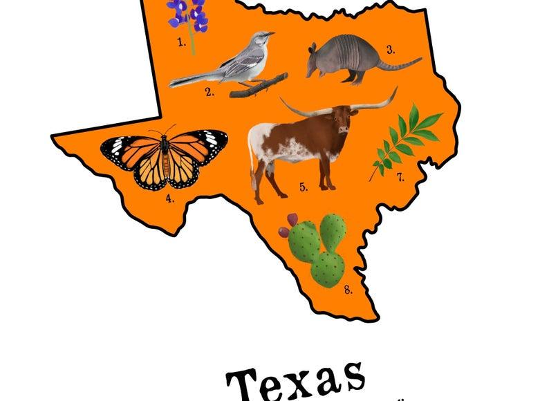 Texas State Symbol Art Texas Art Texas Wall Art Art