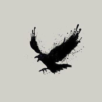 Raven Black One Color Ink Painted Bird Tshirt Tee
