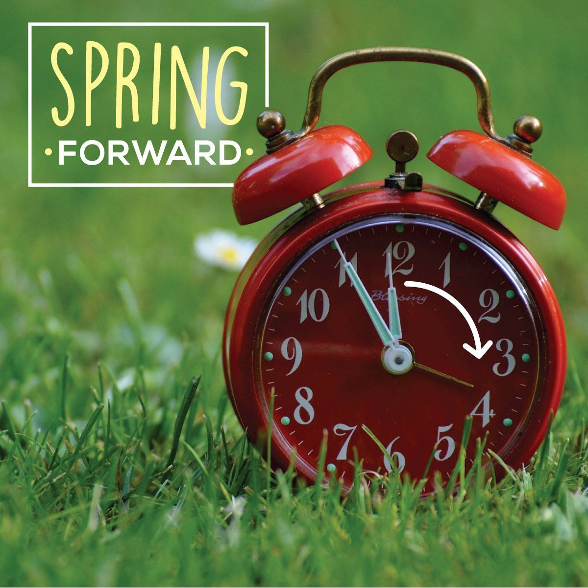 Just A Friendly Reminder To Move Your Clocks Ahead This