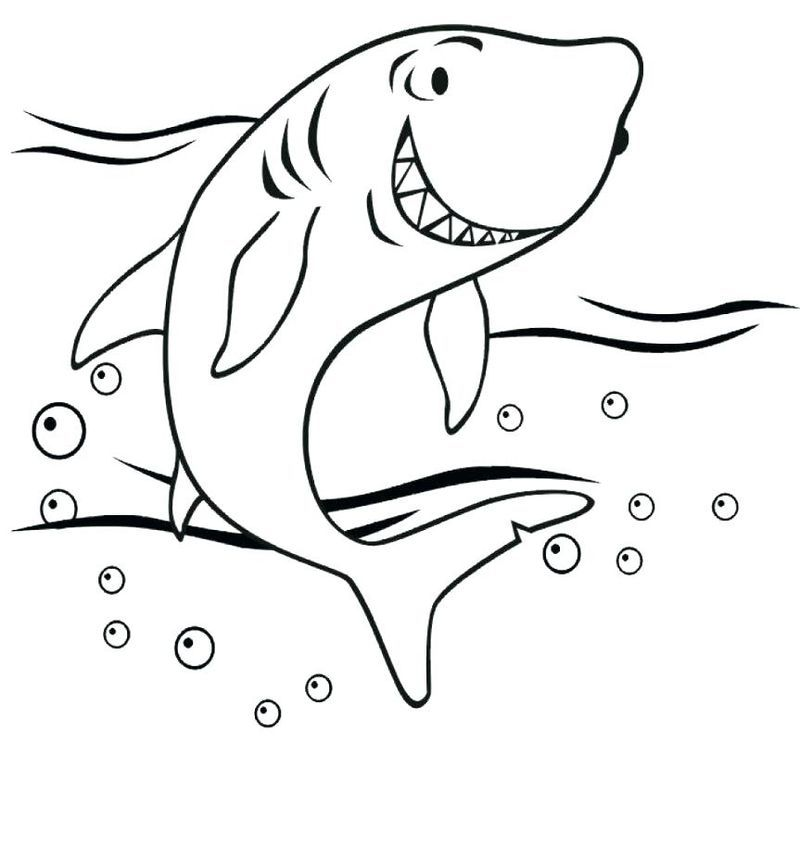 Shark Coloring Page Halaman Mewarnai Buku Mewarnai Warna