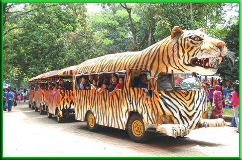 Harga Masuk Kebun Binatang Ragunan Jakarta