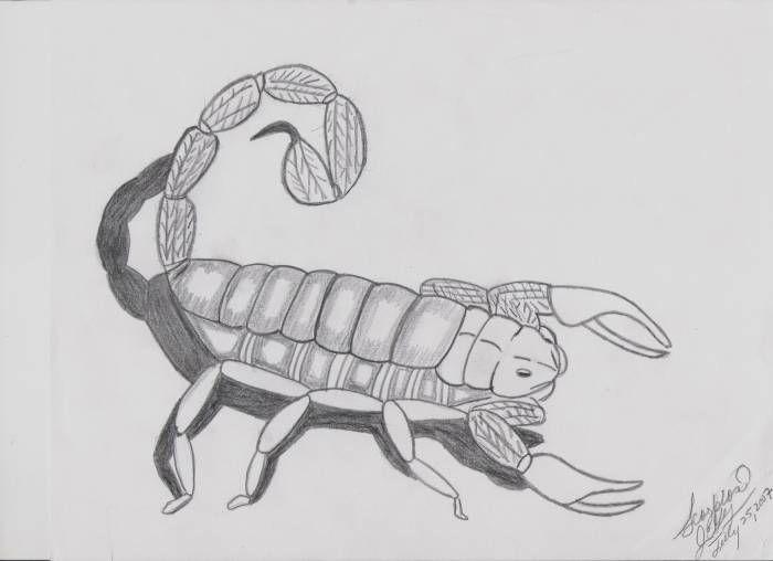 Alacran A Lapiz Buscar Con Google Art Humanoid Sketch