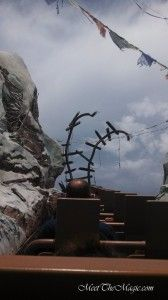 Expedition Everest Top of Mountain on disneybloggers.blogspot.com