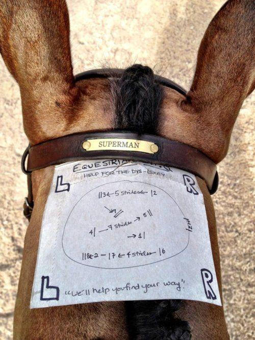 Equestrian GPS.