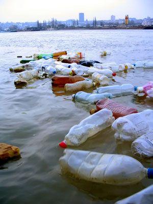 El plástico genera un gran impacto ambiental, pero ¿sabes que genera riesgos a la salud por la presencia de elementos tóxicos que pasan a los alimentos?