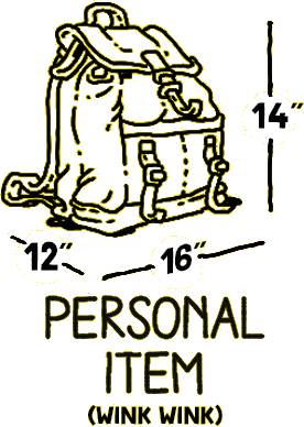 Travel Bag Weight Limits 16