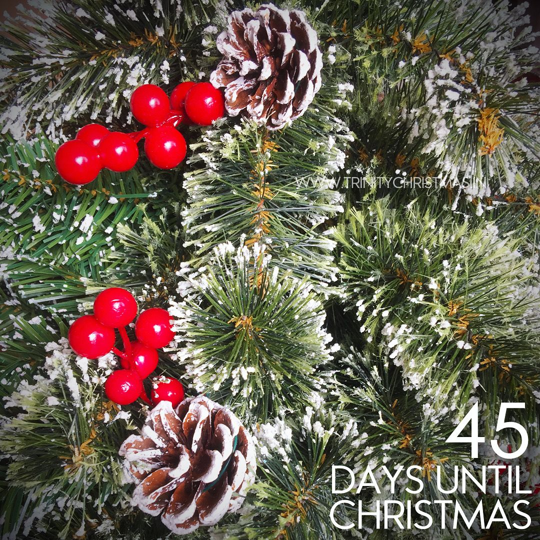 45 Days until Christmas 🎄🎅🏻 . . . Shop Online 🌐: www.trinitychristmas.in Delivered all over #India . . #ChristmasCountdown #TrinityChristmas #christmas #December25 #christmastree #santa #christmasmood #christmasspirit #christmas2019 #christmasornament #earlychristmas #xmas #NativitySet