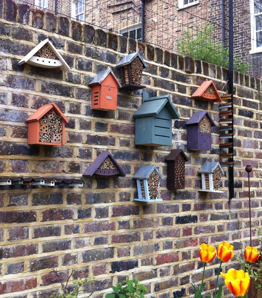 A wall of insect hotels. A selection of insect hotels can ...
