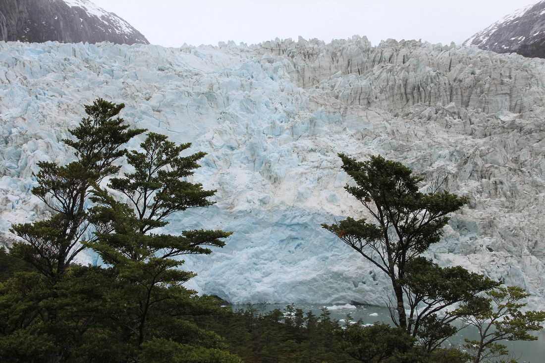 A glacier in Patagonia (the southern end of South America):  #vacation #nature #adventure  Visit transatlantic.travel or contact Eileen Schlichting to learn more!
