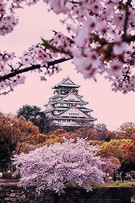 Photo of 38 Trendy Ideas Travel Aesthetic Japan