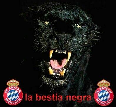 Pin auf Bayern Munich FC