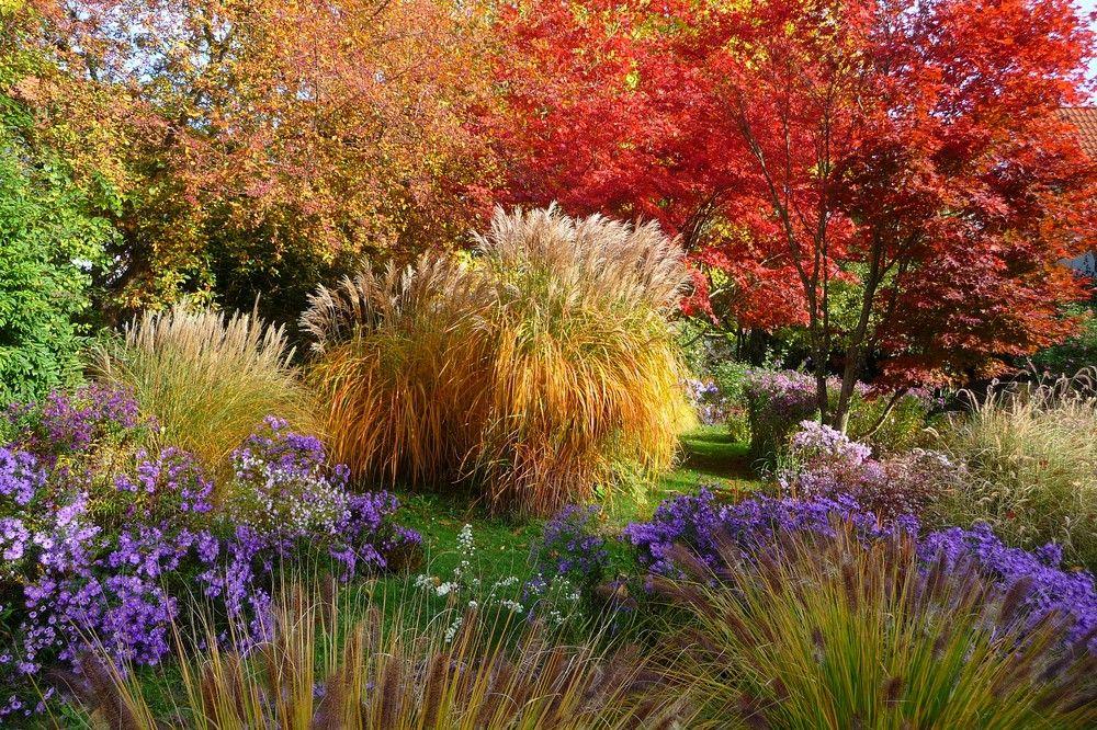 Herbstmalerei-Oktober - Bilder und Fotos