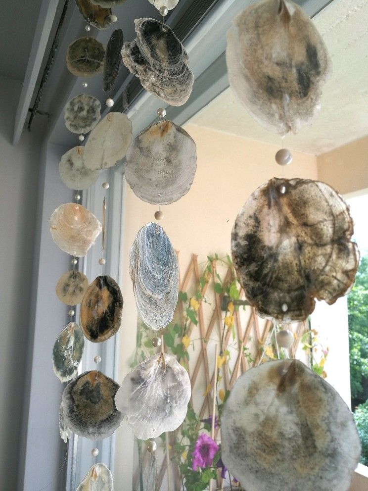 Nämä helmiäiset tuli aikoinaan kerättyä yhdeltä Goan pikkurannalta jonne ajeltiin monasti vapaapäivän viettoon. Naulalla reiät ja siimaan, mukaan helmiä katkenneesta korusta.