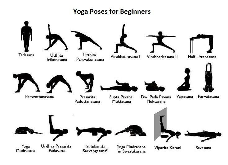 Pin By Aotea Yoga On Yoga Poses Iyengar Yoga Basic Yoga