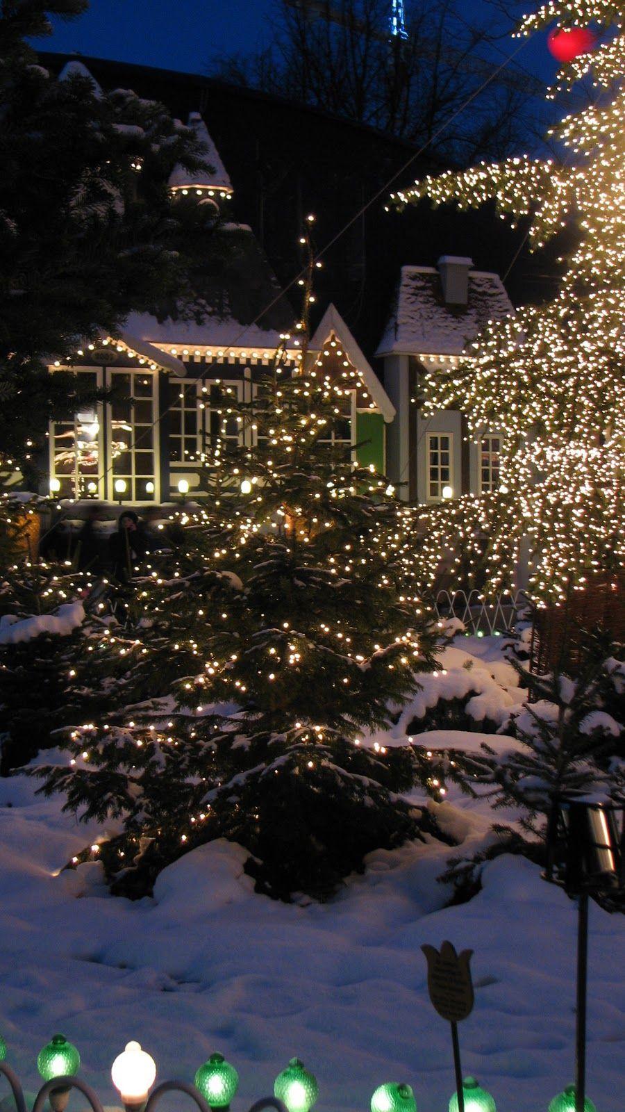 Noël, lumières du jardin   Noël   Pinterest   Christmas lights, Snow ...