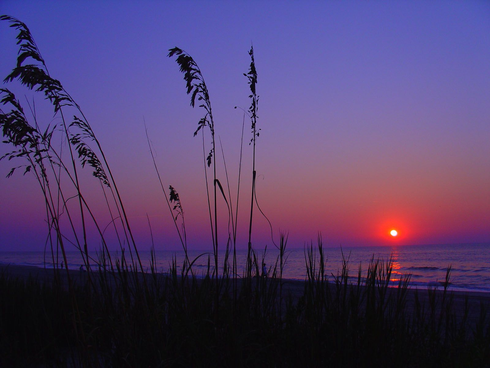 Pink Sunset In Myrtle Beach South Carolina