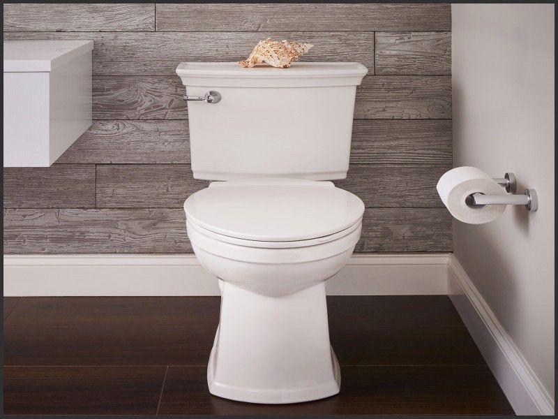 New Toilet With Built In Bidet Uk