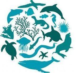 22 de mayo: Día Mundial de la Biodiversidad | EROSKI CONSUMER